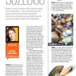 Star_Pazar-HER_GÖRDÜĞÜN_ÇİFT_KABUKLUYU_MİDYE_SANMA!-[Aydan_Üstkanat]-16.03.2014 (1)