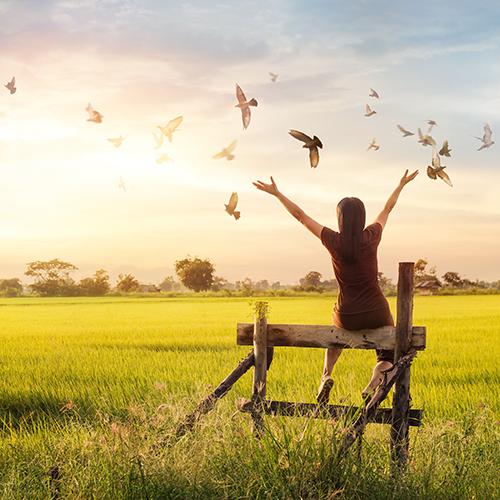 Affetmek, Stres ve Sağlık